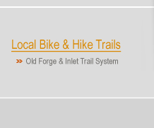 Old Forge Trail System, Mountain bike, hike